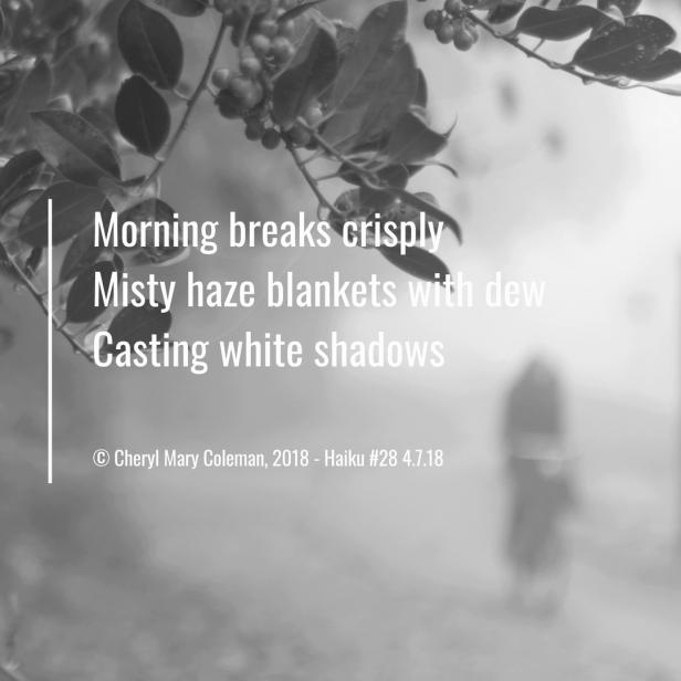 Haiku Visual #28