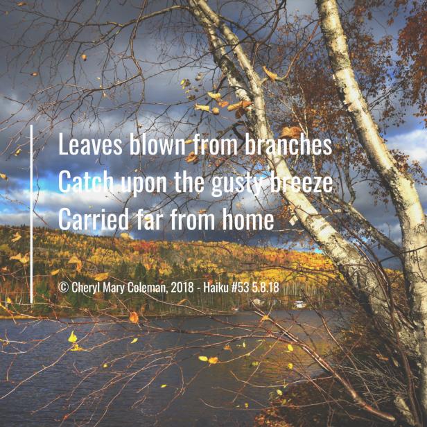 Haiku Visual #53